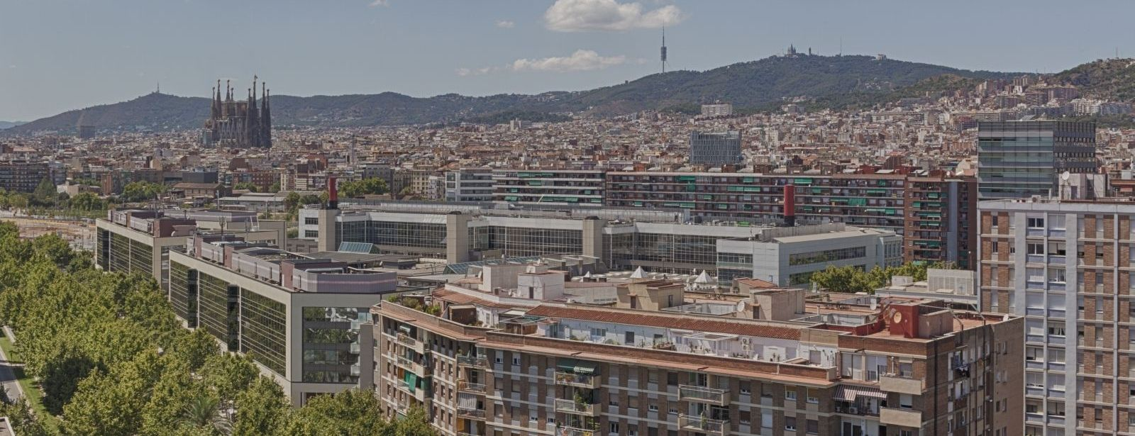 Vista | Four Points by Sheraton Barcelona Diagonal